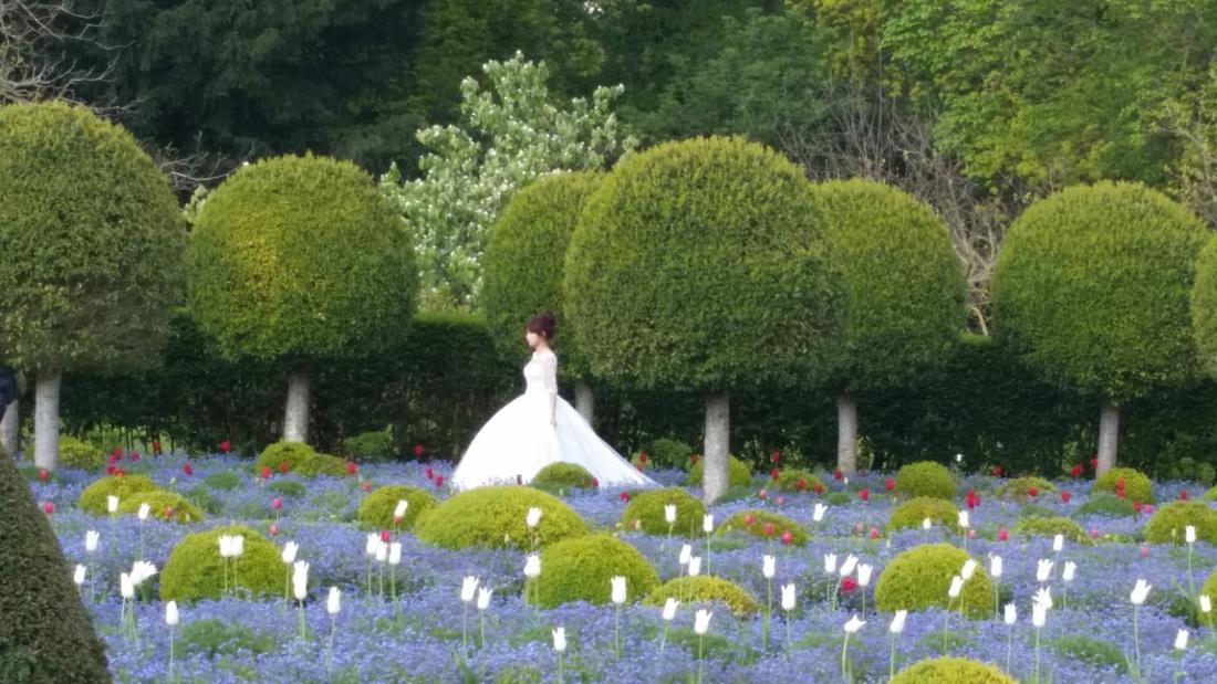 Parc de sceaux bride by Marina Peters-Newell, Ph.D.
